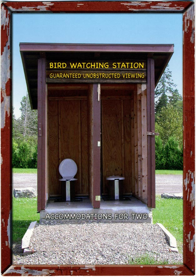 Bird-watching-station.jpg